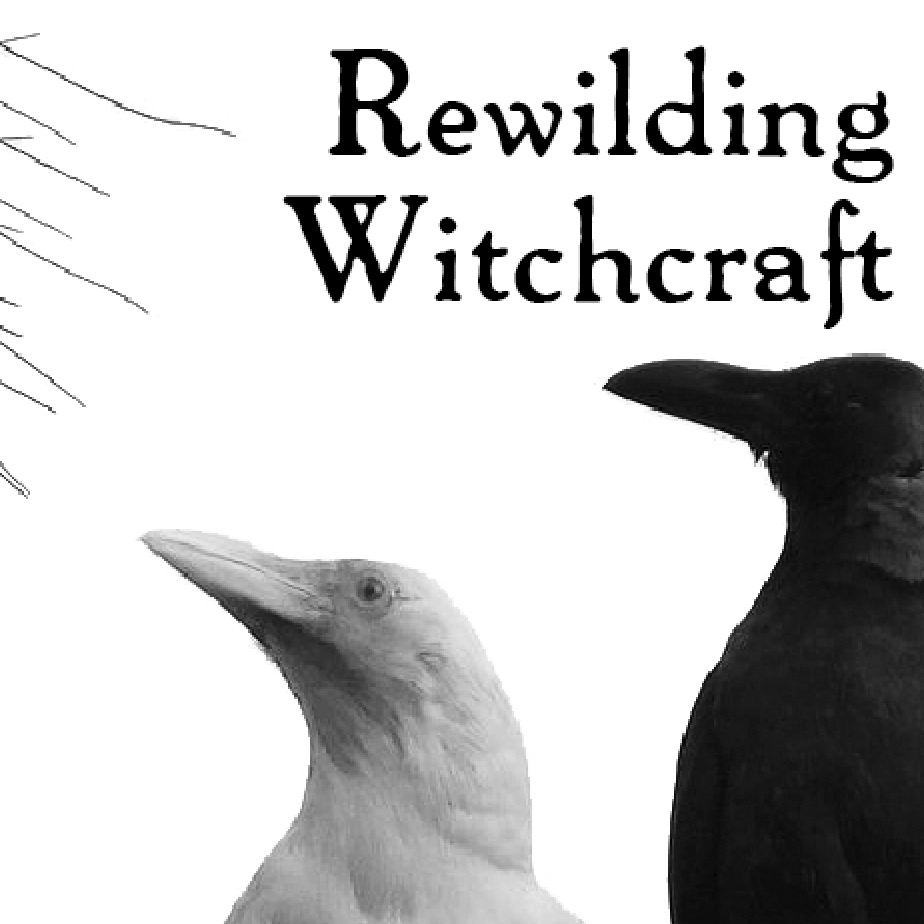 black text with a white corvid and black corvid: rewilding witchcraft