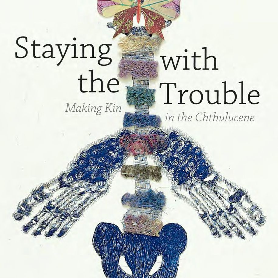 Book cover: Staying with the Trouble, black words on white background with string illustration
