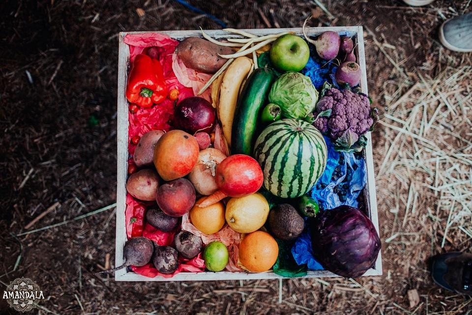 rainbow of garden fruits and vegies